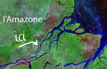 Le bassin amazonien
