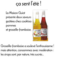 Sirops de la maison Guiot, Monin lien vers le site