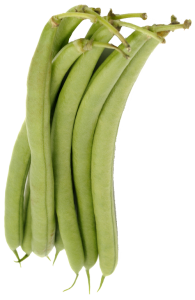 cooktoo_haricot_vert_v2